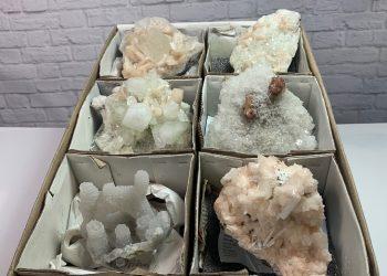 6pc specimens