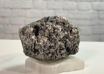 Black Coral