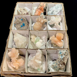 12 Pcs Assorted Specimens